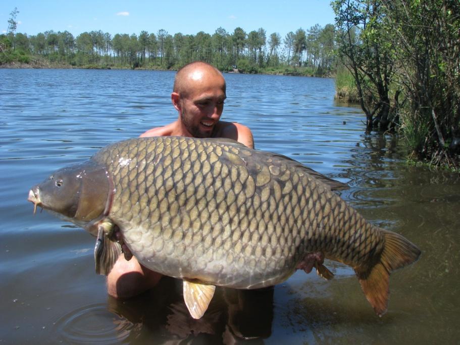 30 kilo