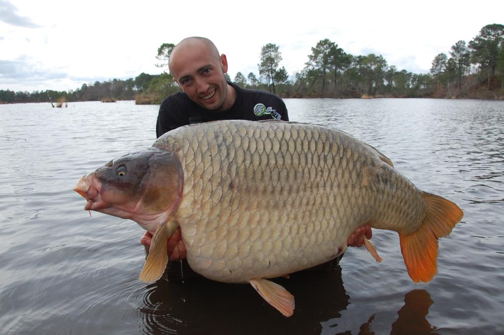 35,20 kilo